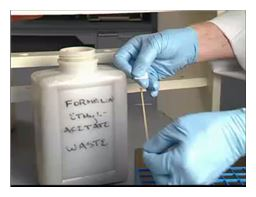 Medical Lab Tech - Formalin-Ethyl Acetate Concentration Procedure