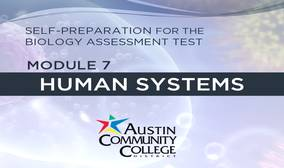 Biology Review Module 7: Human Systems