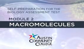 Module 2: Macromolecules Biology